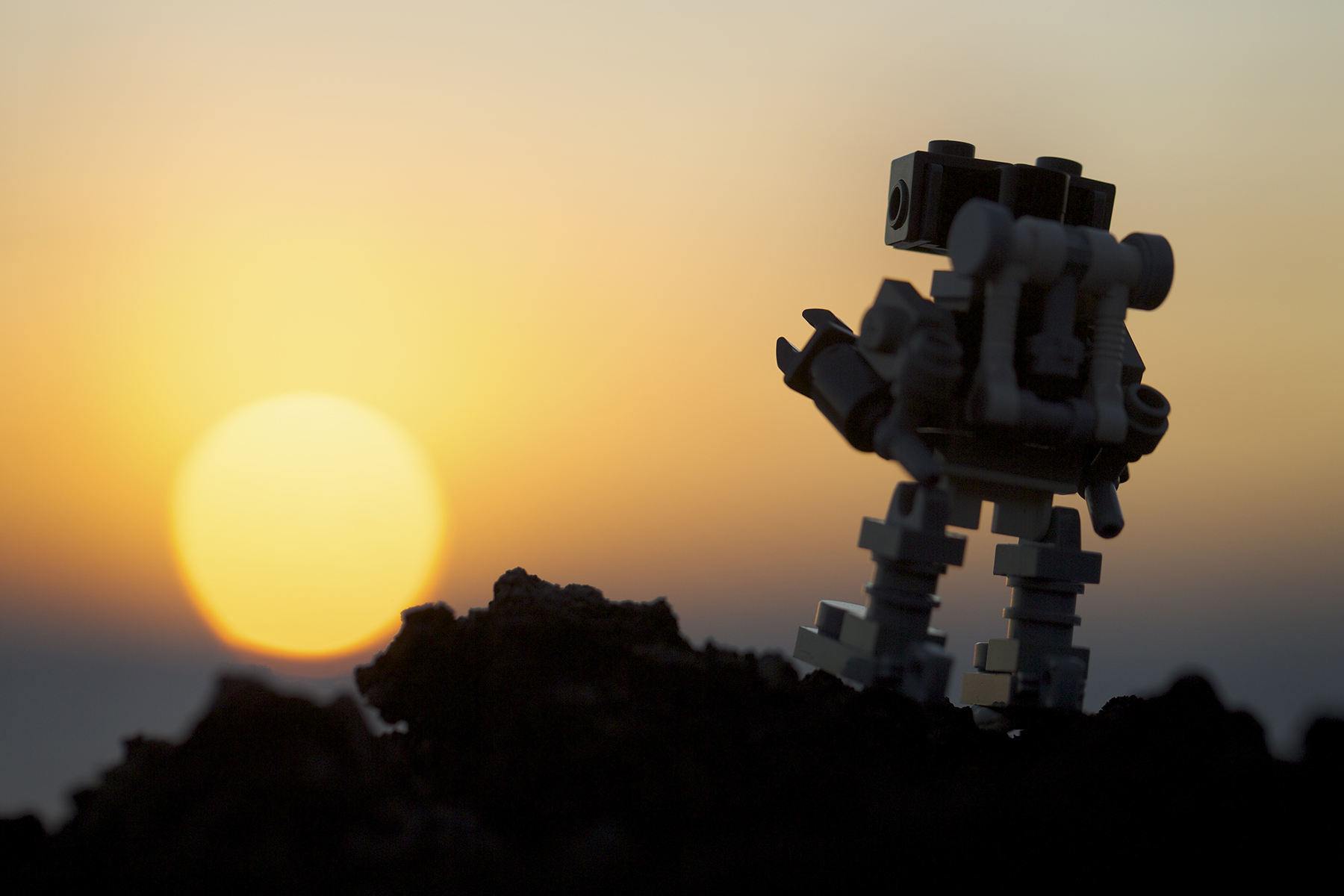 Robot Sunset